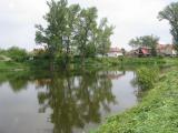 U Tůně 11.5.2010 (foto L. Tomek)